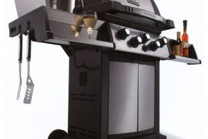 Natural Gas Grills – How to choose the best one for you