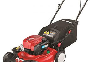 5 Affordable lawn mowers that will maintain your lawn everytime